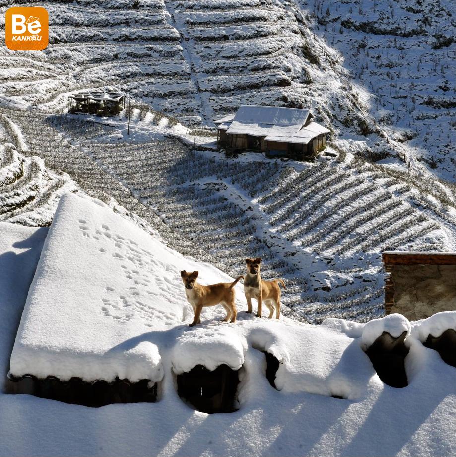 冬のサパ旅行の知っておくべき経験