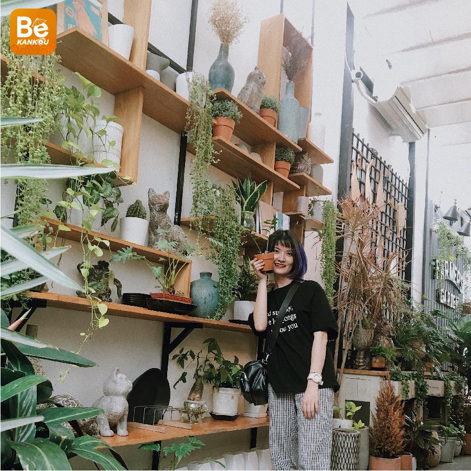 木でいっぱいのトップ3サイゴンカフェ